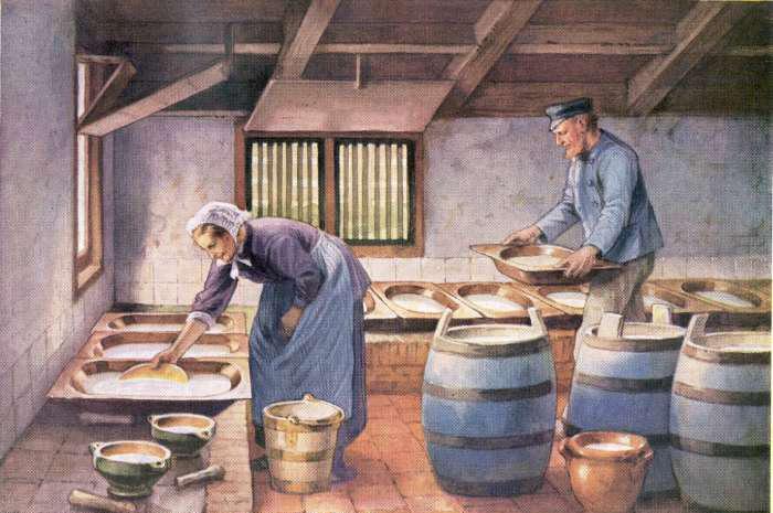 boerderij 04739 melk afromen voor de boterbereiding